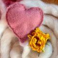 placenta_malinova_4